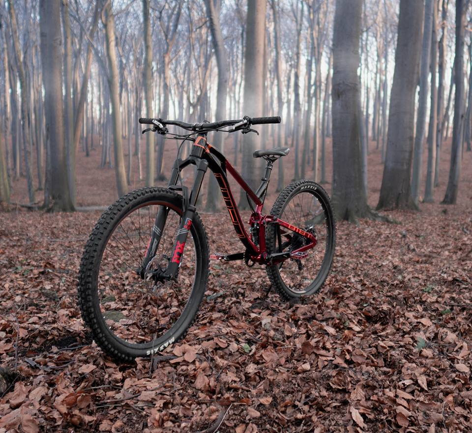 Omen Racing Boar 29er 2