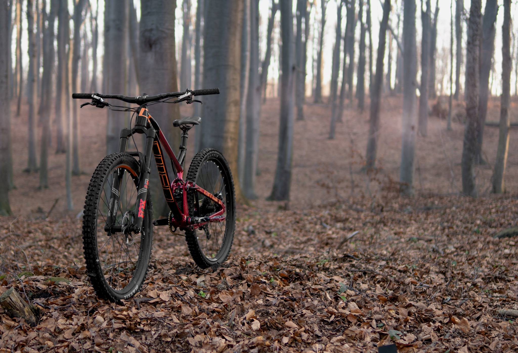 Omen Racing Boar 29er 4